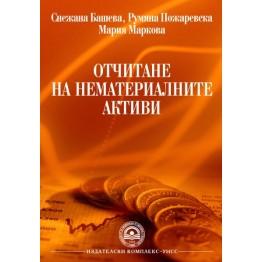 Отчитане на нематериални активи  -  Башева  2012