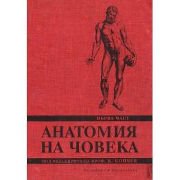 Анатомия на човека I част, Койчев