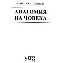 Анатомия на човека Божилова 2015