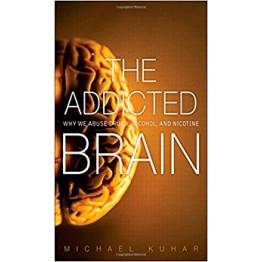 FT.Press.The.Addicted.Brain.Nov.2011